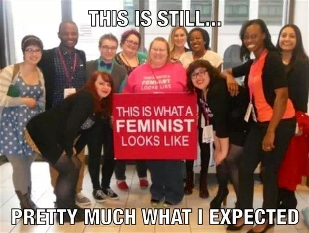 funny femminists