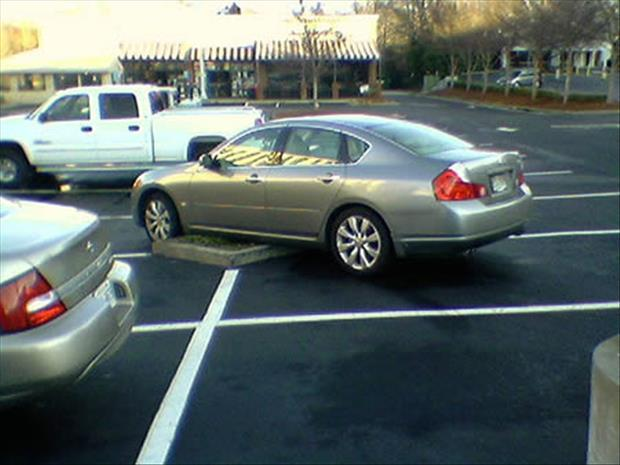 funny parking jobs (4)