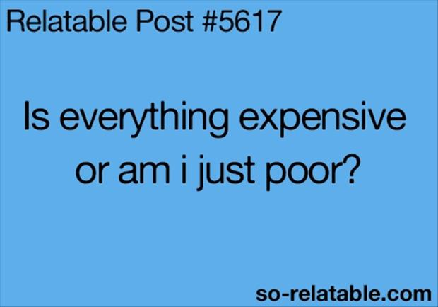 funny quotes is everything expensive