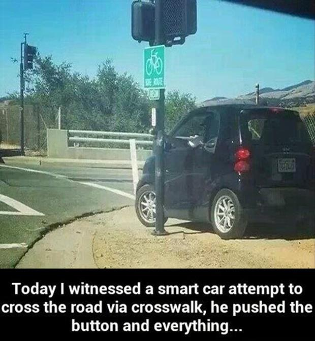 funny smart car