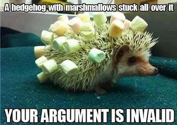 hedgehog with marshmellows