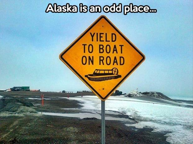 meanwhile in alaska