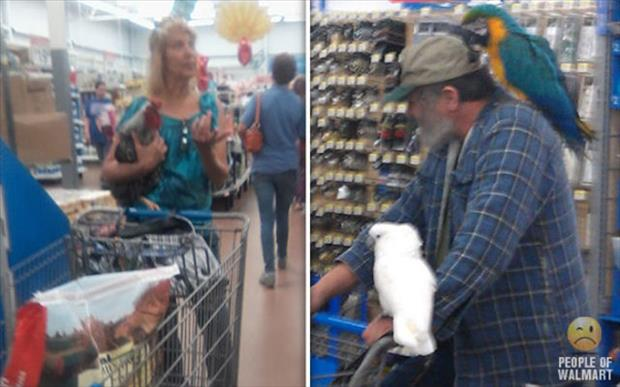 people of wal mart (9)