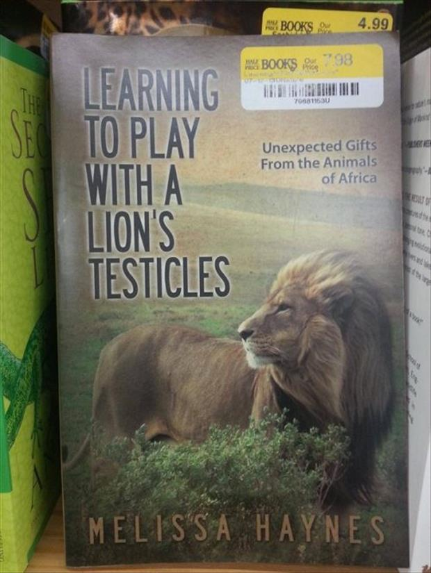 play with a lions testicles