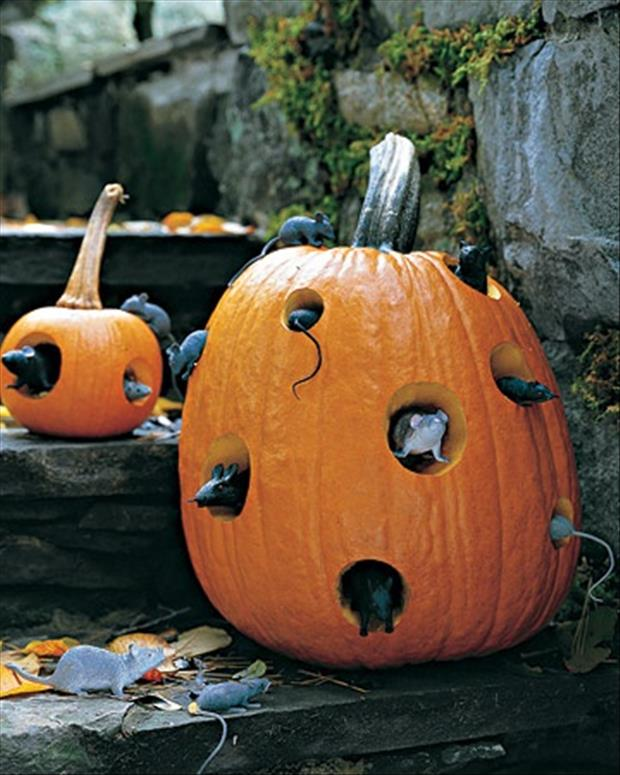 pumpkin ideas (13)