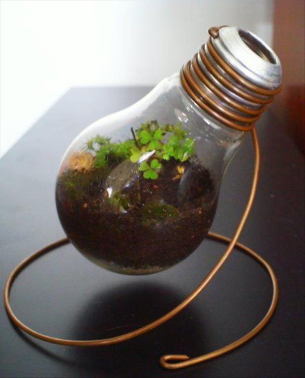 recycle and reuse old things (5)