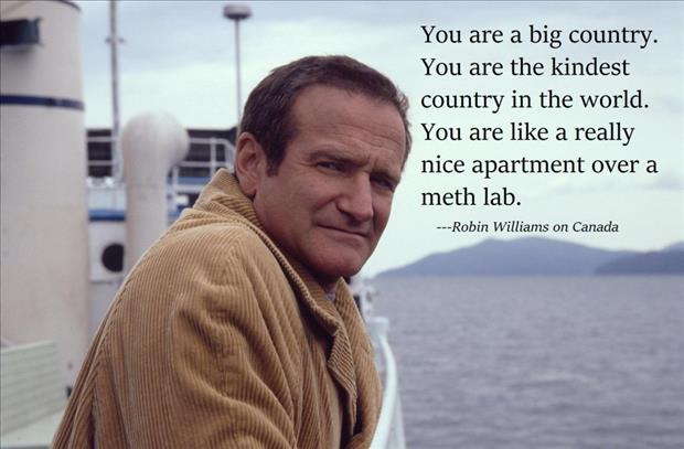 robin williams quotes