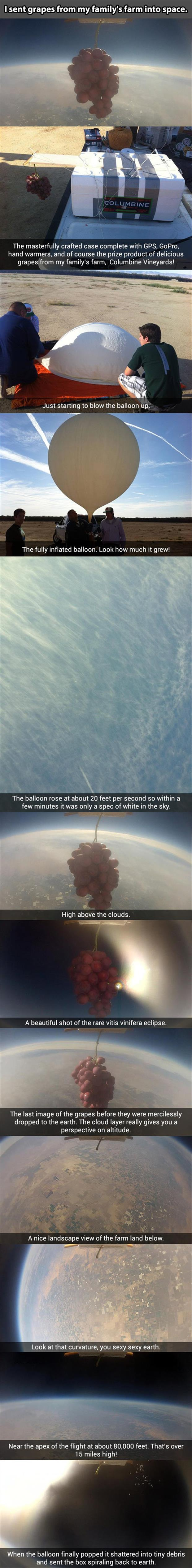 sent my grapes into space