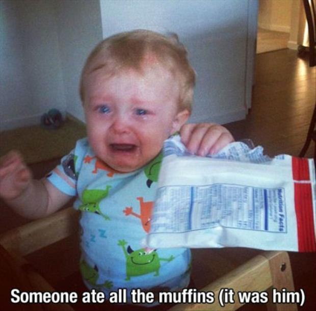 somone ate all the muffins