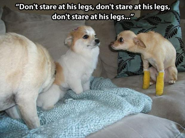 don't look at his legs