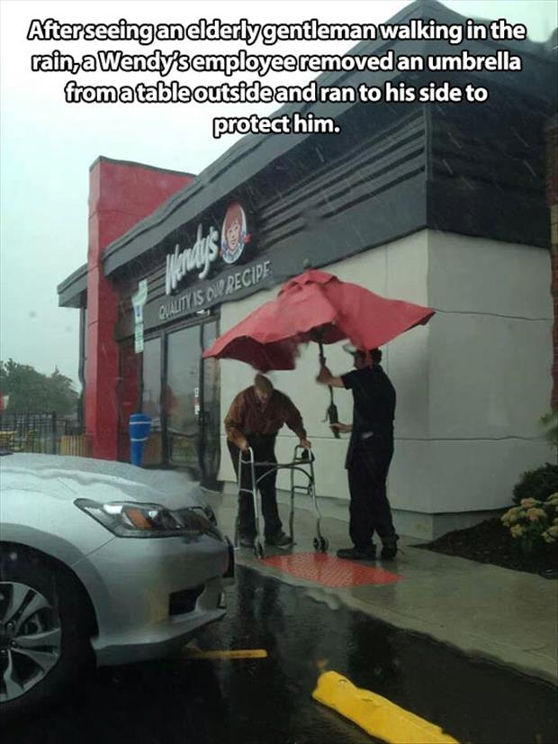 faith in humanity restored (21)