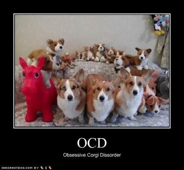 funny ocd pictures (3)