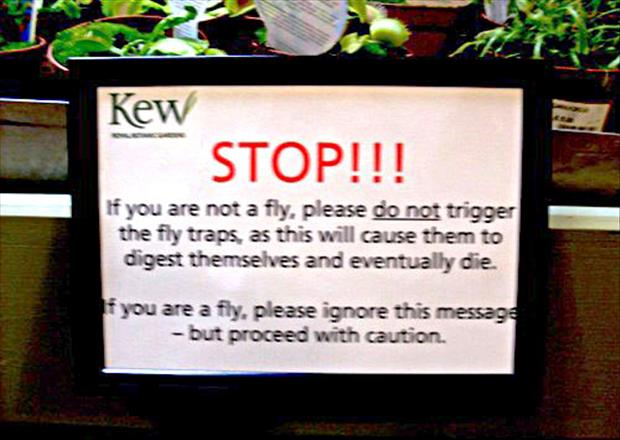 funny plant signs