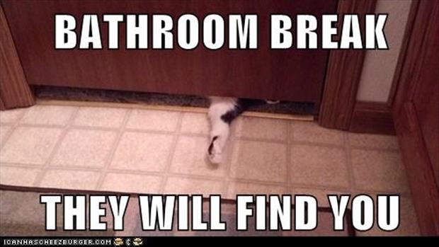 funny privacy pictures (1)
