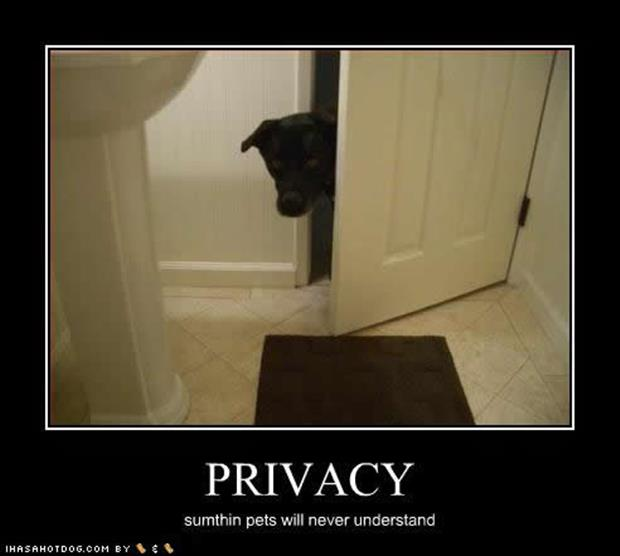 funny privacy pictures (2)