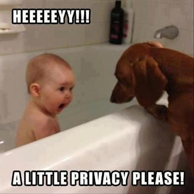 funny privacy pictures (8)