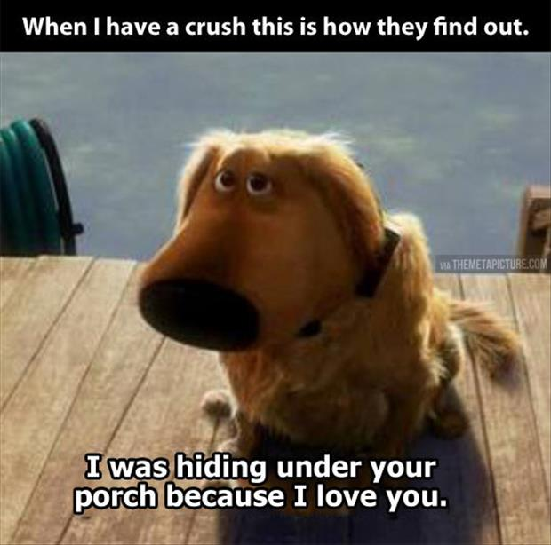 having a crush