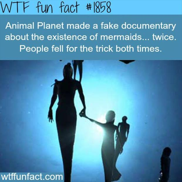 movie facts (36)