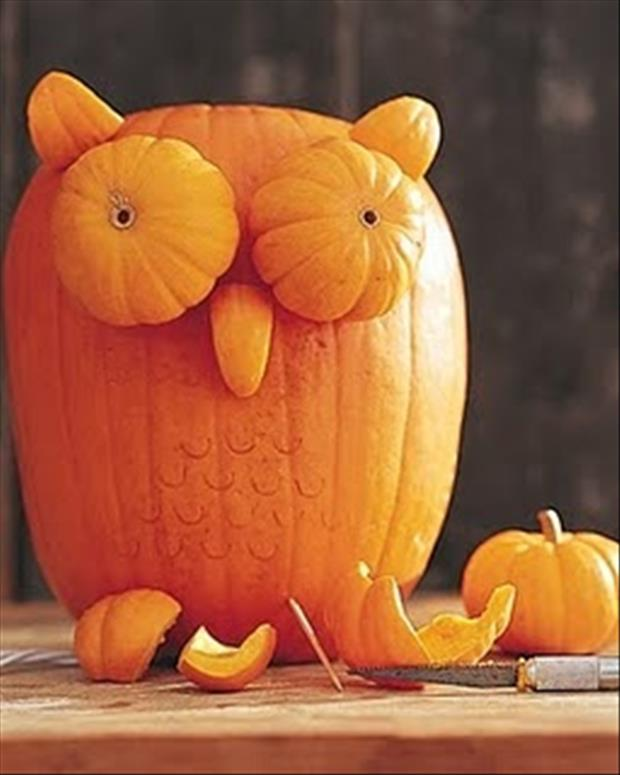pumpkin carving ideas (3)