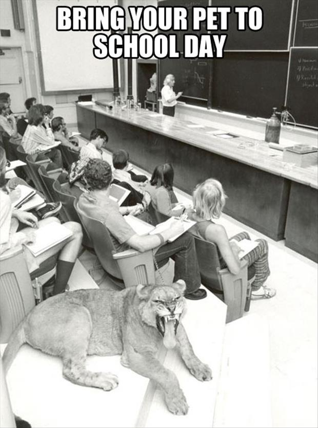the bring your pet to school day