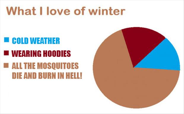 why I love winter