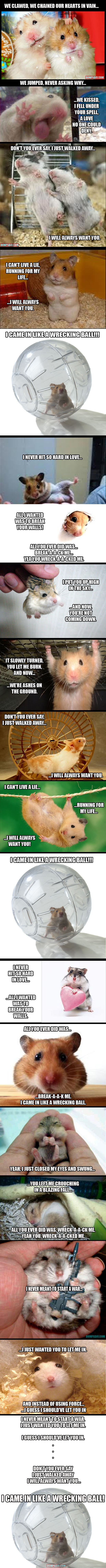 wrecking ball hamsters