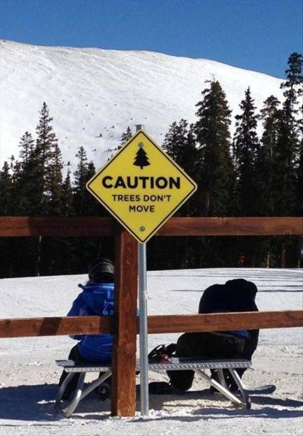 funny cation signs