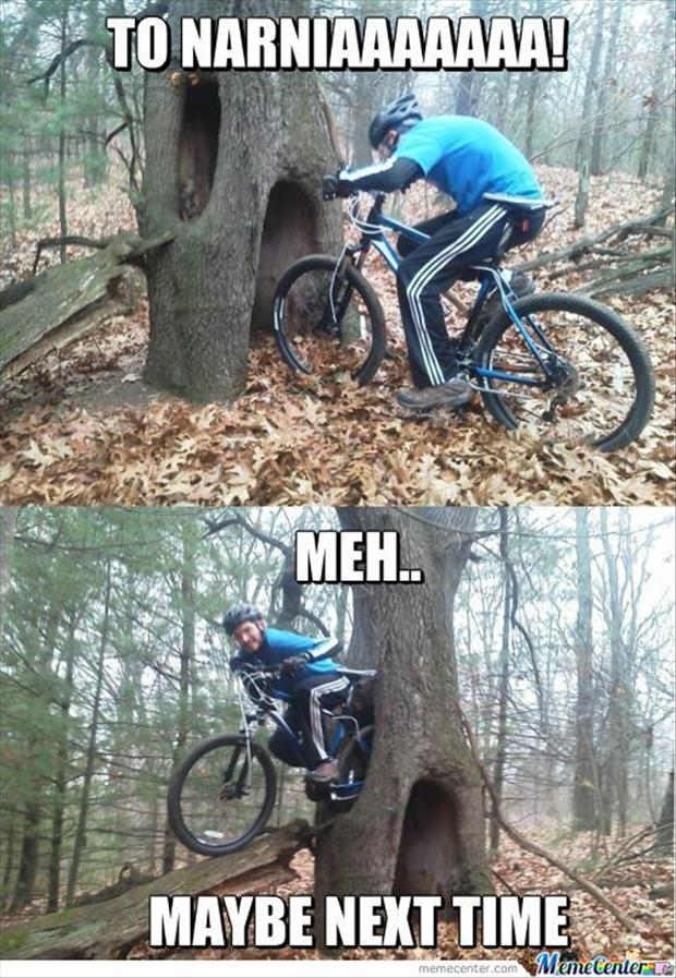 funny pictures (21)