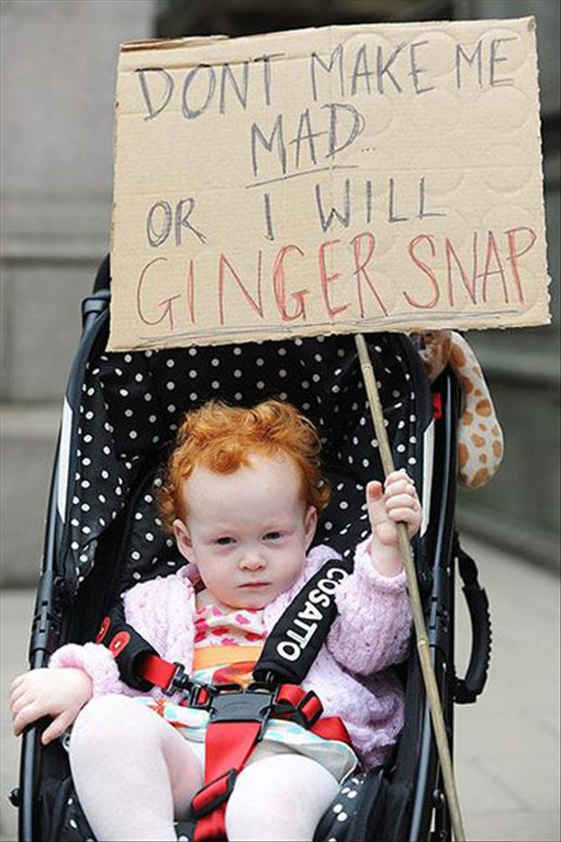 ginger snap
