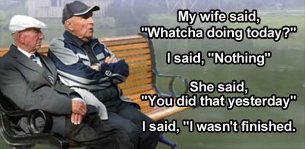 one liner wife jokes