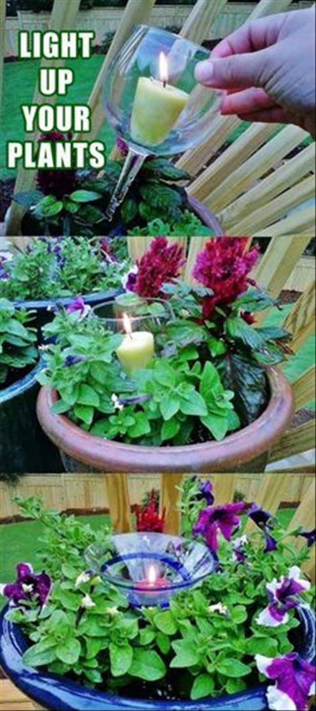 outdoor ideas (8)