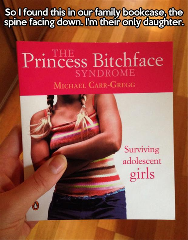the princess bitchface book
