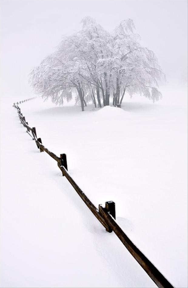 untouched snow, beautiful winter scene