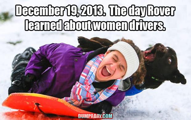 even the dog hates women drivers