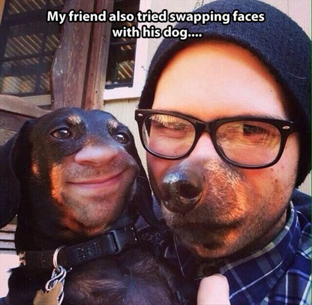 face swapping with dog