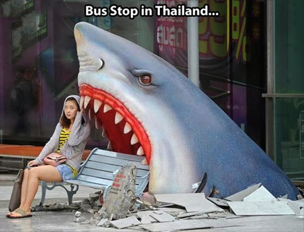 funny bus stops