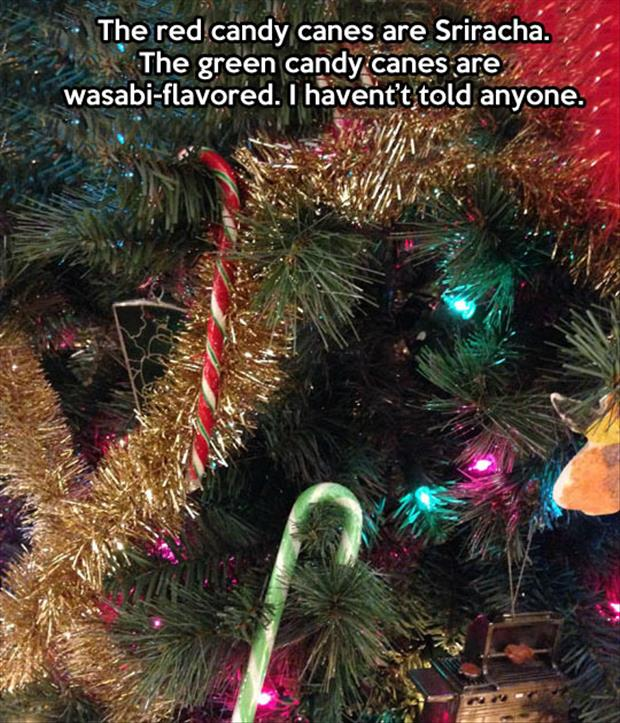 funny candy canes