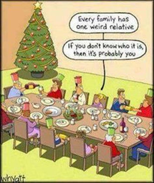 funny christmas pictures (3)