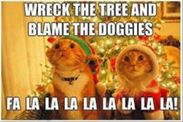 funny christmas pictures (36)