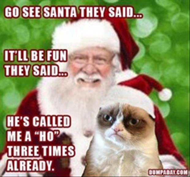 funny christmas pictures (7)