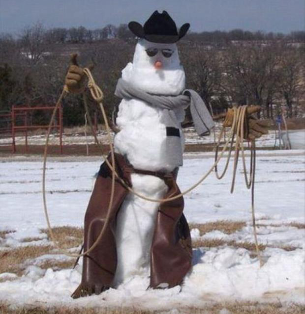 funny snowman (3)