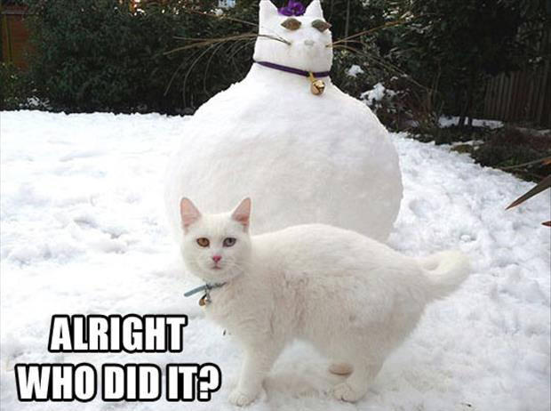 funny snowman (6)