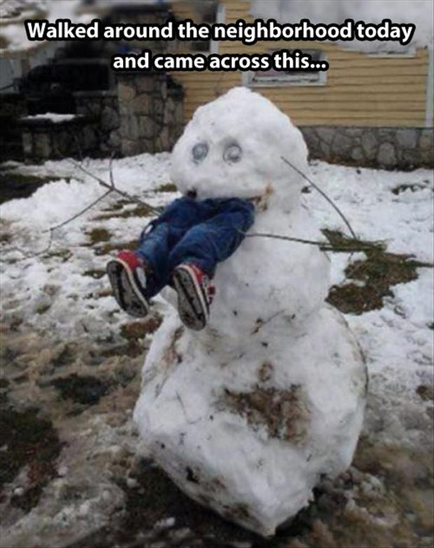 funny snowman (7)