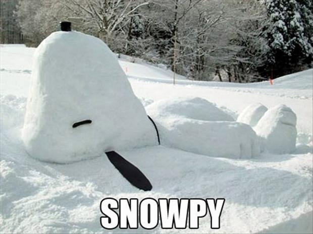 funny snowman (8)