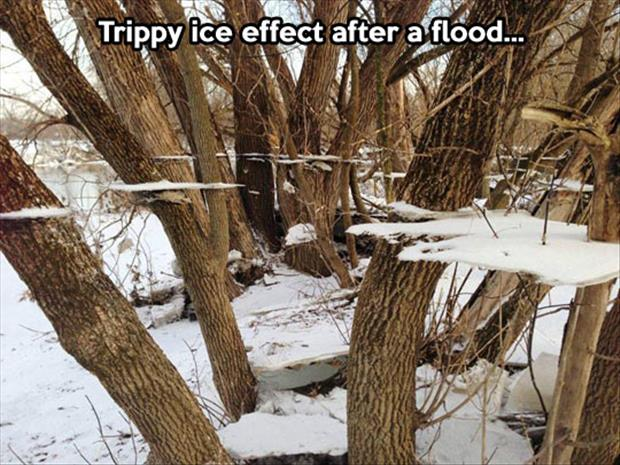 ice after a flood