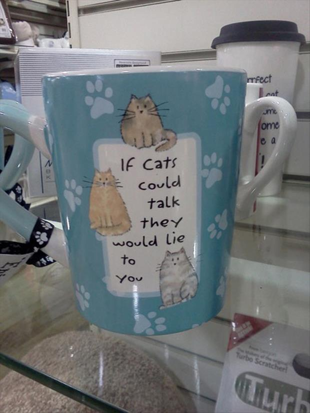 if-cats-could-talk-they-would-lie-to-you