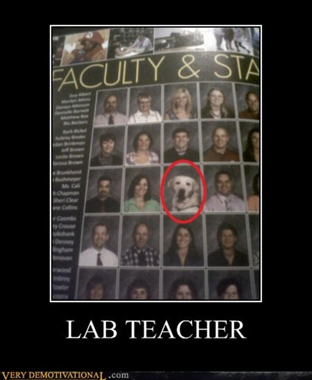lab teacher