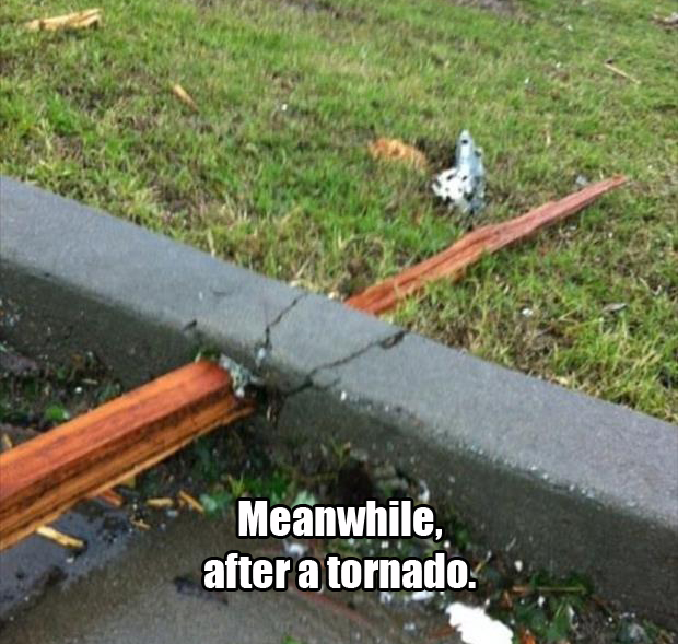 meanwhile after a tornado