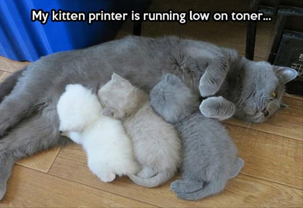 running low on toner