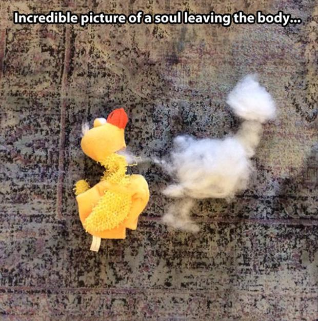 soul leaving the body